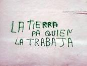 SAT: Eine ganze Reihe von Landbesetzungen in Andalusien