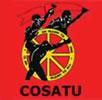 Cosatu