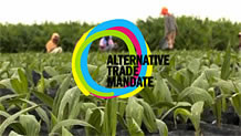 Alternatives EU-Handelsmandat