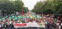 20.000 demonstrieren in Sevilla