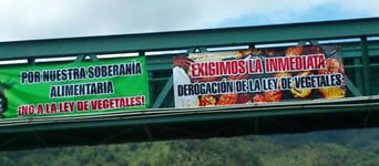 Widerstand gegen das  Monsantogesetz in Guatemala