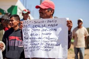 Tagelöhner in Mexiko - neuer Protest
