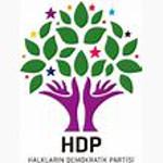 Parteilogo der HDP Türkei