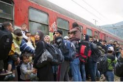 Flüchtlinge an der ungarischen Grenze im August 2015