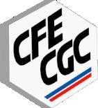 Logo der französischen Gewerkschaft der Energiewirtschaft