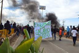 Kampf der Landarbeiter in Mexiko (2015)