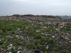 Müllhalde in der ätiopischen Hauptstadt am 17.3.2017 - sieht gar nicht gefährlich aus...
