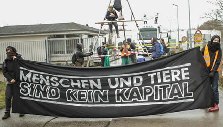 20.3.2017: Wiesenhof-Schlachtfabrik in Königswusterhausen/Niederlehme blockiert