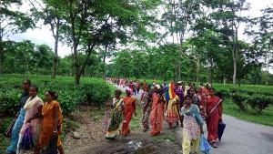 Arbeiterinnen der Teeplantagen im Streik demonstrieren in Westbengalen am 12.6.2017