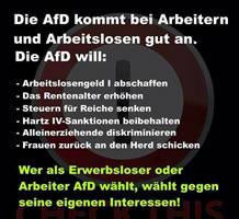 """""""... Wer als Erwerbsloser oder Arbeiter die AfD wählt, wählt gegen seine eigenen Interessen!"""""""