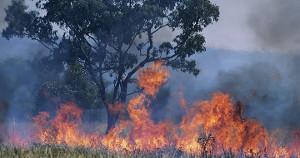Im Sommer 2017 die Waldbrände durch Bomben der türkischen armee ausgelöst, nähern sich den Städten