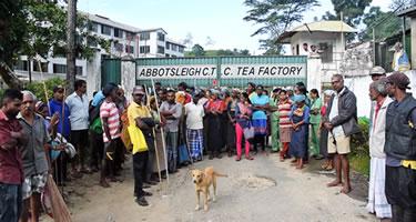 Srilankische Plantagenarbeiter beenden Streik unter Protest (Dezember 2018)