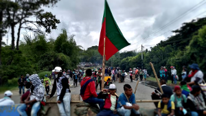 Straßemblockaden indigener Organisationen im Südwesten Kolumbiens wurden am 19.3.2019 von der ESMAD überfallen