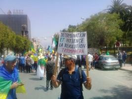 """Der """"Atem"""" der DemonstrantInnen in Algerien ist sehr lang - ihre Entschlossenheit, sich nicht vom Regime einfangen zu lassen, ebenfalls"""