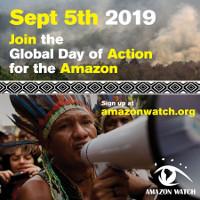 Aktion zur Verteidigung des Amazonas am 5.9.2019 - indigene Netzwerke rufen auf