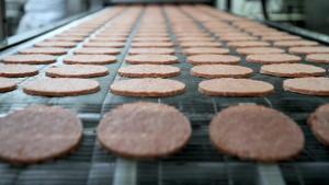 Fleischfabriken in den USA: Tödlich. Nicht nur für Tiere